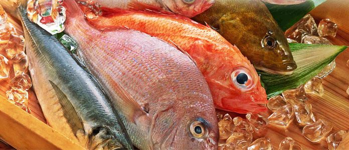Balık Alırken Nelere Dikkat Etmeliyiz